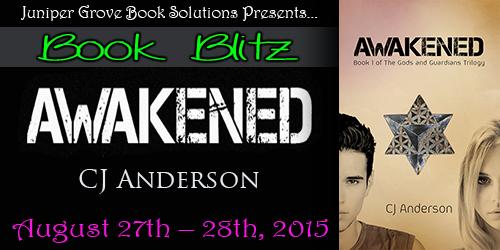 Awakened Blitz Banner